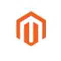 experienced magento developer