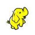 Hadoop hire developers in uae