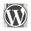 wordpress hire developers in uae